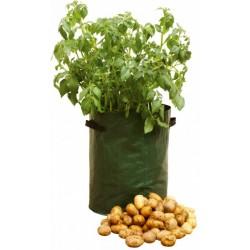 Saca'patata de chez ECOVIE